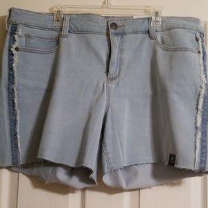 Women's plus size Demin Jean Shorts